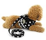 Ranphy 超小型犬 小型犬 猫 胴輪 ハーネス リード セット 通気性 可愛い ドット柄 クラウン フラウンス付き (ブラック,M)