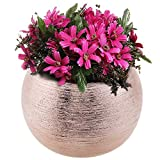 7-Inch Round Modern Rose Gold-Tone Metallic Ceramic Plant Flower Planter Pot, Decorative Bowl Vase