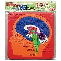 ---まとめ---アーテック・EVA脳パズル・-×30セット-