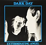 Exterminating Angel [12 inch Analog]
