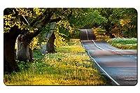 夏の風景、道路、木、草、太陽の光 パターンカスタムの マウスパッド 旅行 風景 景色 デスクマット 大 (60cmx35cm)