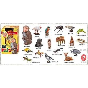 チョコエッグ 10th 日本の動物コレクション 10周年記念版 (フィギュアのみ)