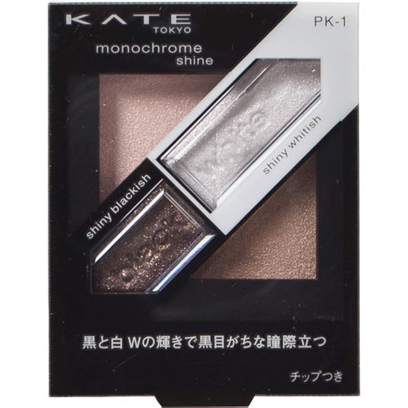高度なわかる輝度カネボウ ケイト モノクロームシャイン PK-1