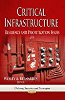 Critical Infrastructure: Resilience and Prioritization Issues (Defense, Security and Strategies)