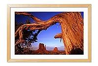 木製の枠 ズックの印刷する絵画 家の壁の装飾画 ポスター (40x60cm 材木色) 砂漠の岩、木