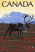 カナダ–Caribou ( Side ) 24 x 36 Giclee Print LANT-14650-24x36