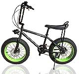 ファットバイク カスタム FAT BIKE 20インチ 自転車 グリーン ギア付 バナナシート チョッパーハンドル