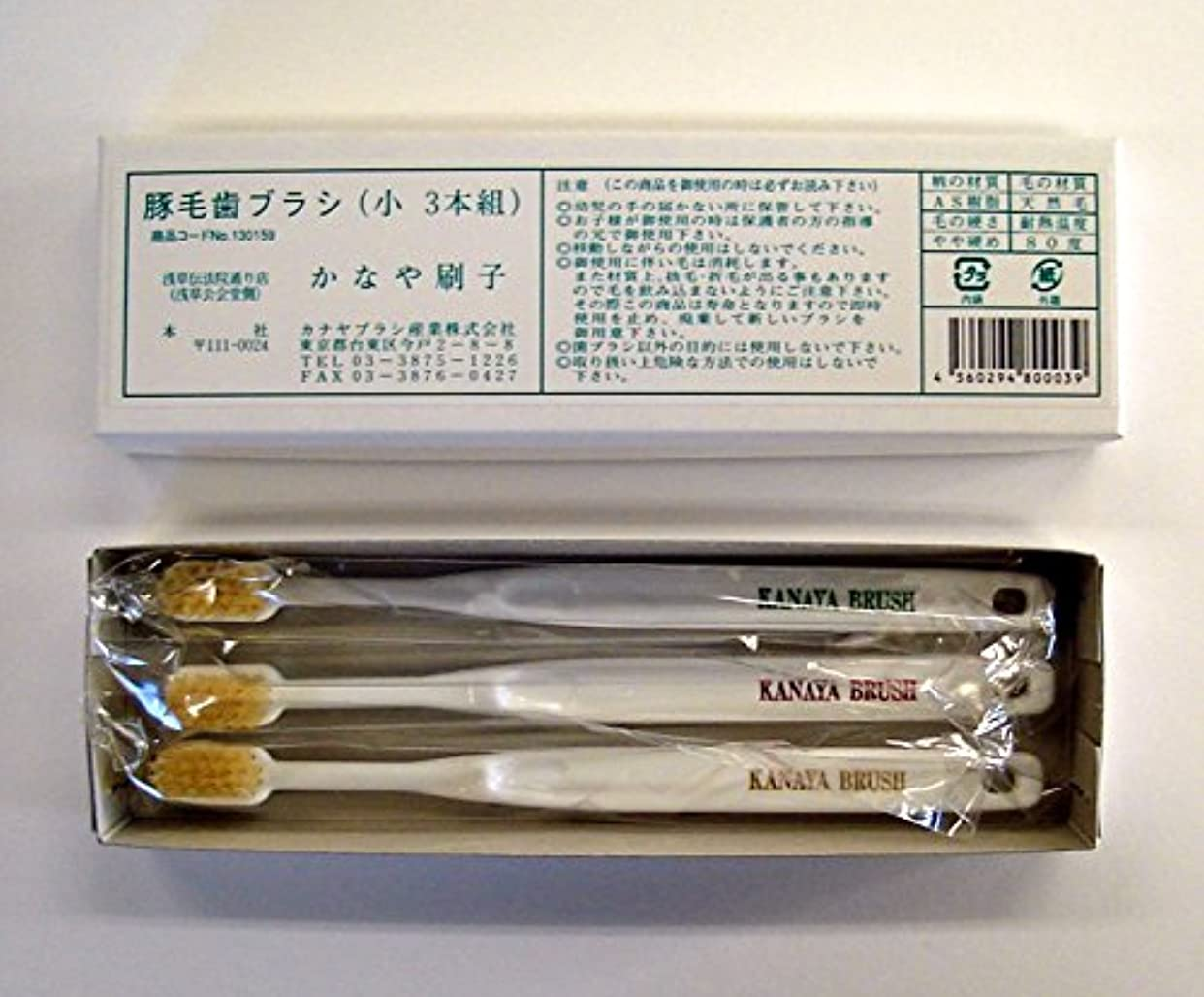 政権ポゴスティックジャンプブロンズ豚毛歯ブラシ(3本入り) 絶品! カナヤブラシ製品 毛質:硬め (小)