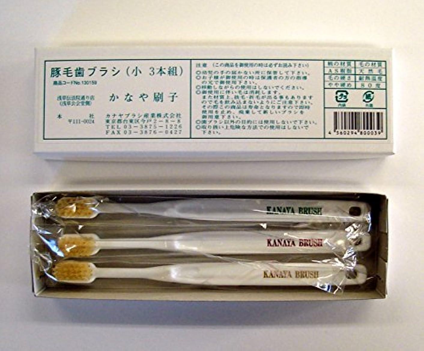 おかしい適切に十分な豚毛歯ブラシ(3本入り) 絶品! カナヤブラシ製品 毛質:硬め (小)