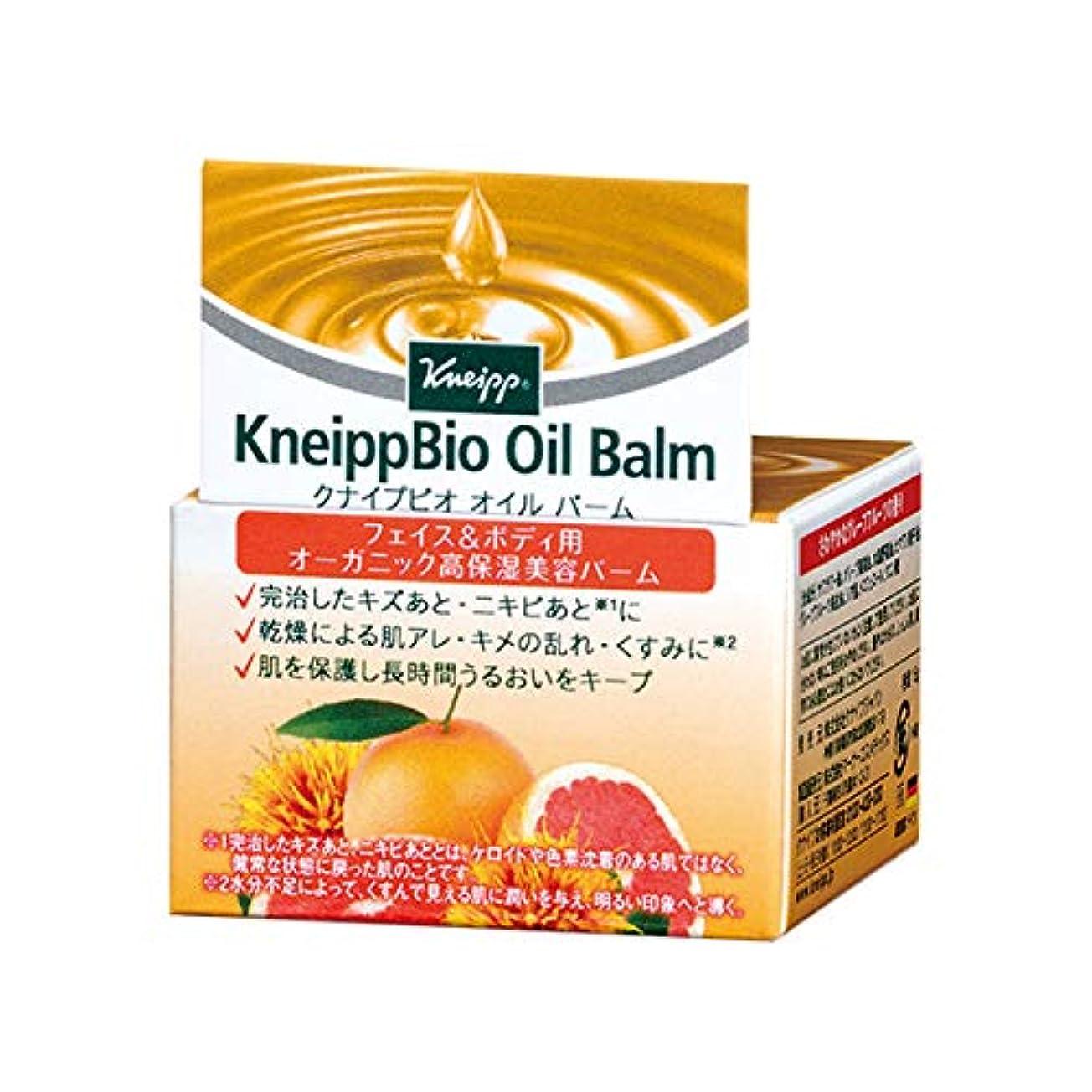 ひねり熱狂的な印象クナイプ(Kneipp) クナイプビオ オイル バーム 15g 美容液