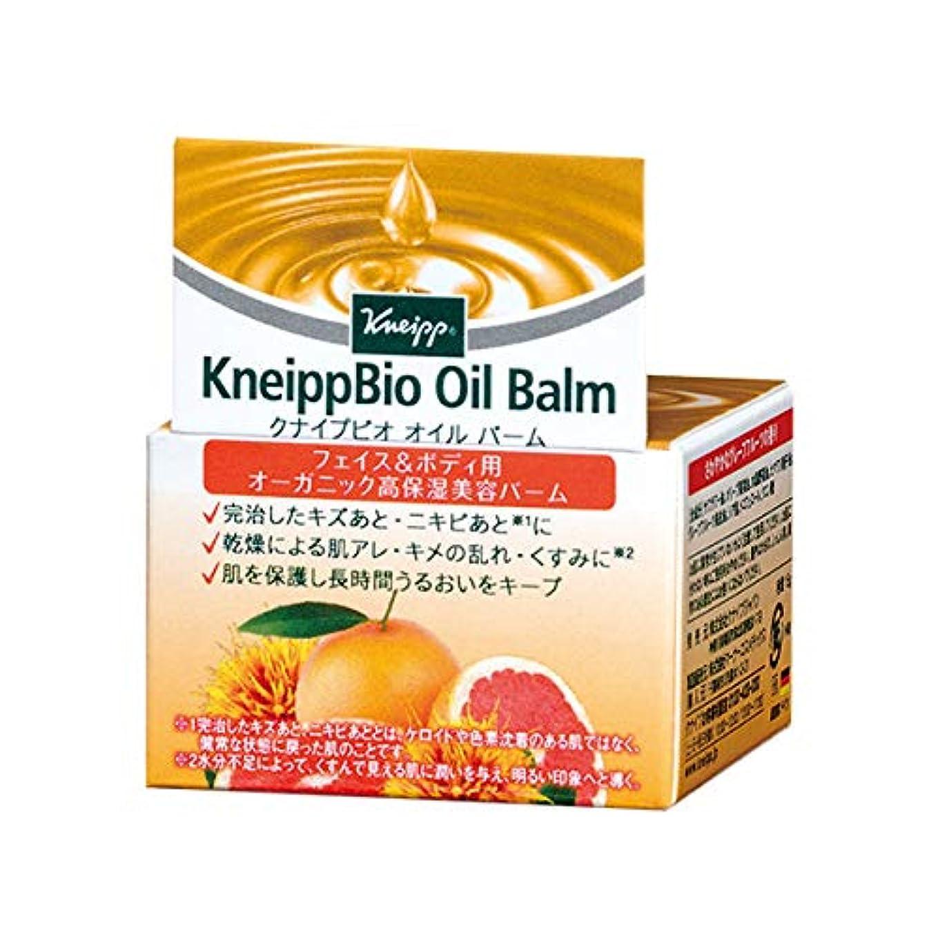 未接続マークされた泥クナイプ(Kneipp) クナイプビオ オイル バーム 15g 美容液
