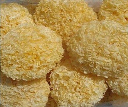 ホワイト菌類キノコTremellaプレミアムグレード1100 g