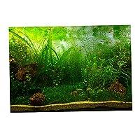 P Prettyia 水族館 魚タンク 装飾 背景 3D効果 ポスター 水生植物 雰囲気を作り出し 全6サイズ - 76x56cm