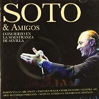 Soto Y Amigos-Concierto