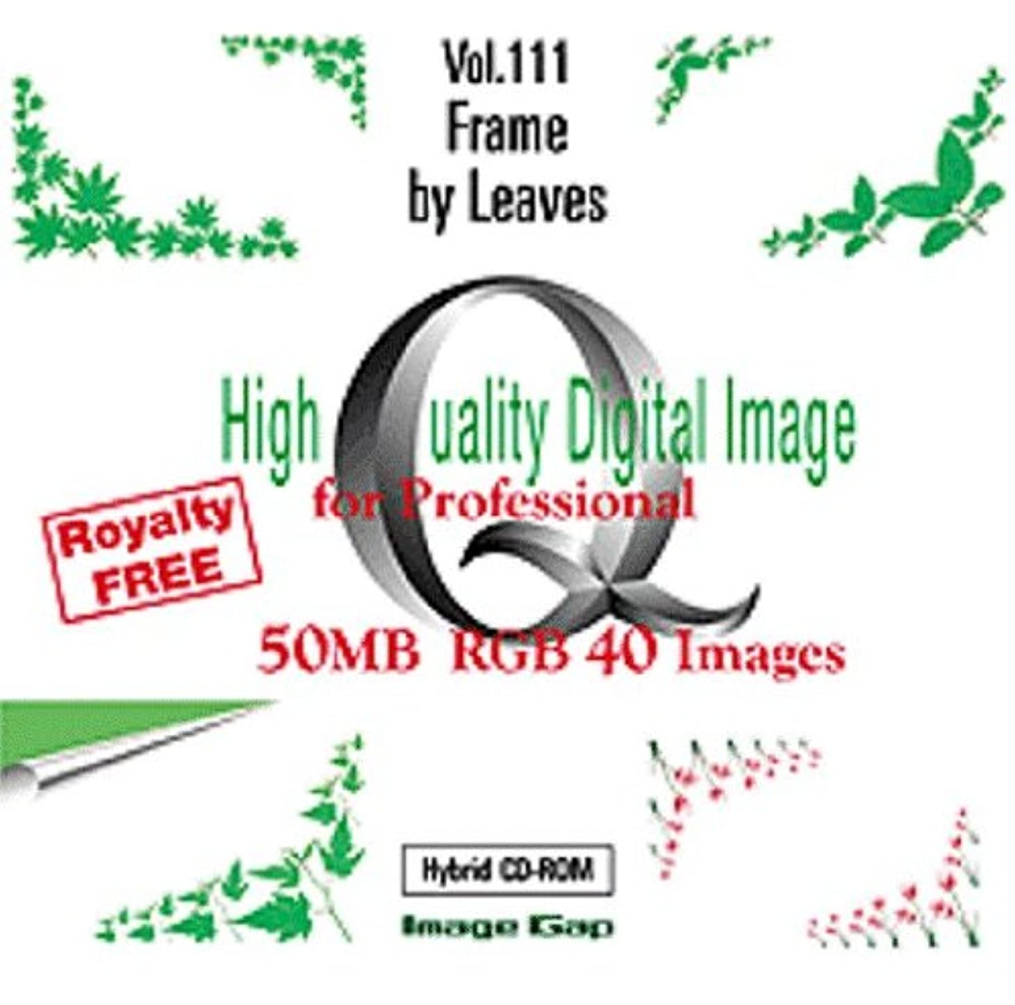 High Quality Digital Image for Professional Vol.111 Frame by Leaves
