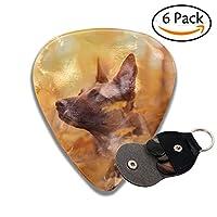 ギターピック ドッグ犬 セルロイド ピック 3つの厚さ Thin 0.46mm Medium 0.71mm Heavy 0.96mm 6枚セット収納ケース付き
