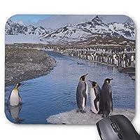 ゲームマウスパッド、自然景観ペンギンの鳥雪山河の滑り止めマウスパッド