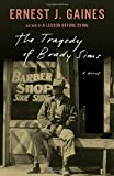 The Tragedy of Brady Sims (Vintage Contemporaries)