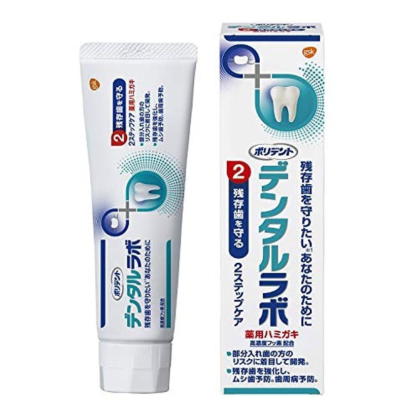 寛容なミニチュア確認してください[医薬部外品]デンタルラボ 薬用ハミガキ 歯周病(歯肉炎?歯槽膿漏) 予防 歯磨き粉 100g
