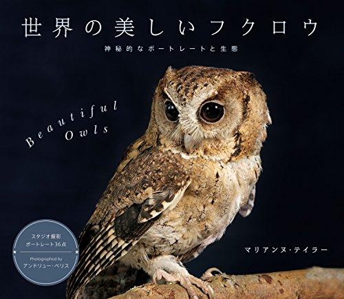 世界の美しいフクロウ 神秘的なポートレートと生態の詳細を見る