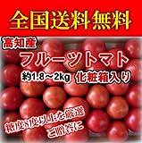 高知産フルーツトマトとまと約1.8kg~2kg