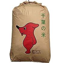 30年産 精米 千葉県産 白米 こしひかり 26.4kg