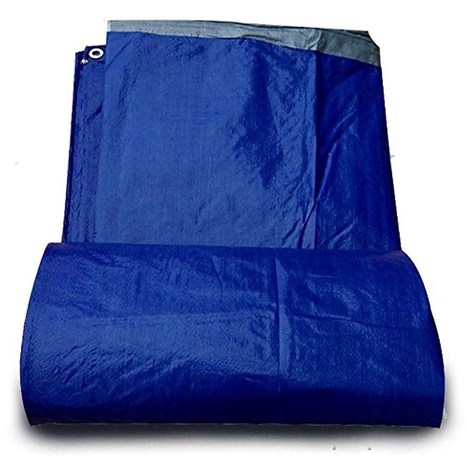 コンベンション抑圧者ずっとYushengxiang 屋外テント肥厚防雨布日焼け止め日焼け止め車の防水シート高温アンチエイジング (Color : 青, サイズ : 3x4M)