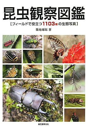 昆虫観察図鑑—フィールドで役立つ1103種の生態写真