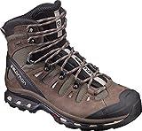 [サロモン]Salomon Quest 4D II GTX Hiking Boots - メンズ バックパッキングブーツ FOSSIL/RAIN DRUM/HUMUS 9.5 [並行輸入品]