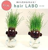 hair LABO(ヘアーラボ)底面給水タイプ 2個セット/丸顔と長顔[頭から芝が生える!] ノーブランド品