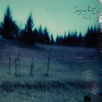 Hvarf Heim by Sigur Ros (2014-02-04)