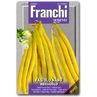 【FRANCHI社種子】【60/27】ツルなしインゲン BERGGOLD