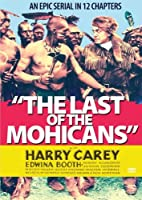 Last of the Mohicans [DVD] [Import]