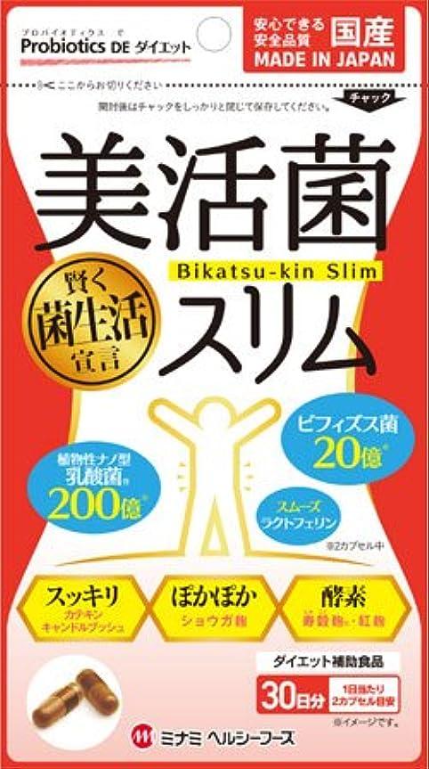 野菜拳ブーム美活菌スリム341mg×60球 ×10