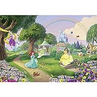 壁紙 輸入壁紙 ドイツ製 ディズニー DISNEY disney プリンセス ベル シンデレラ ラプンツェル 白雪姫 粉のり付 紙 Princess Rainbow 8-449 Z3K