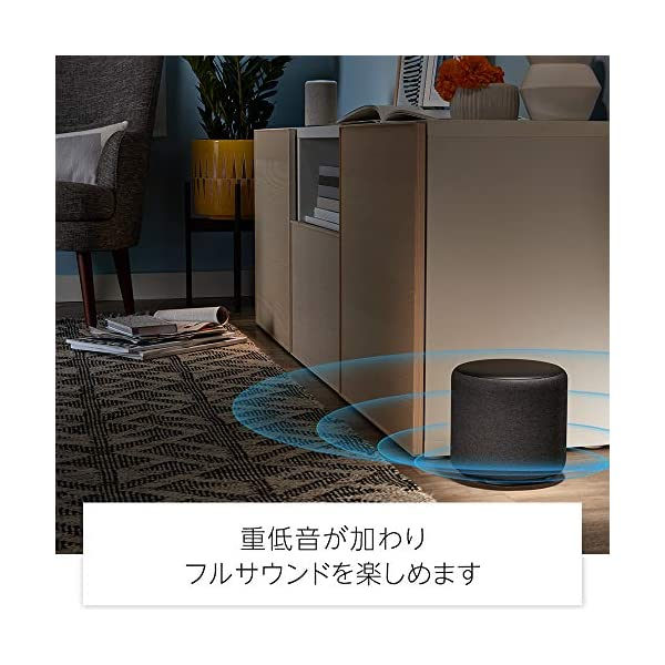 Echo Sub (エコーサブ) - Echo...の紹介画像4