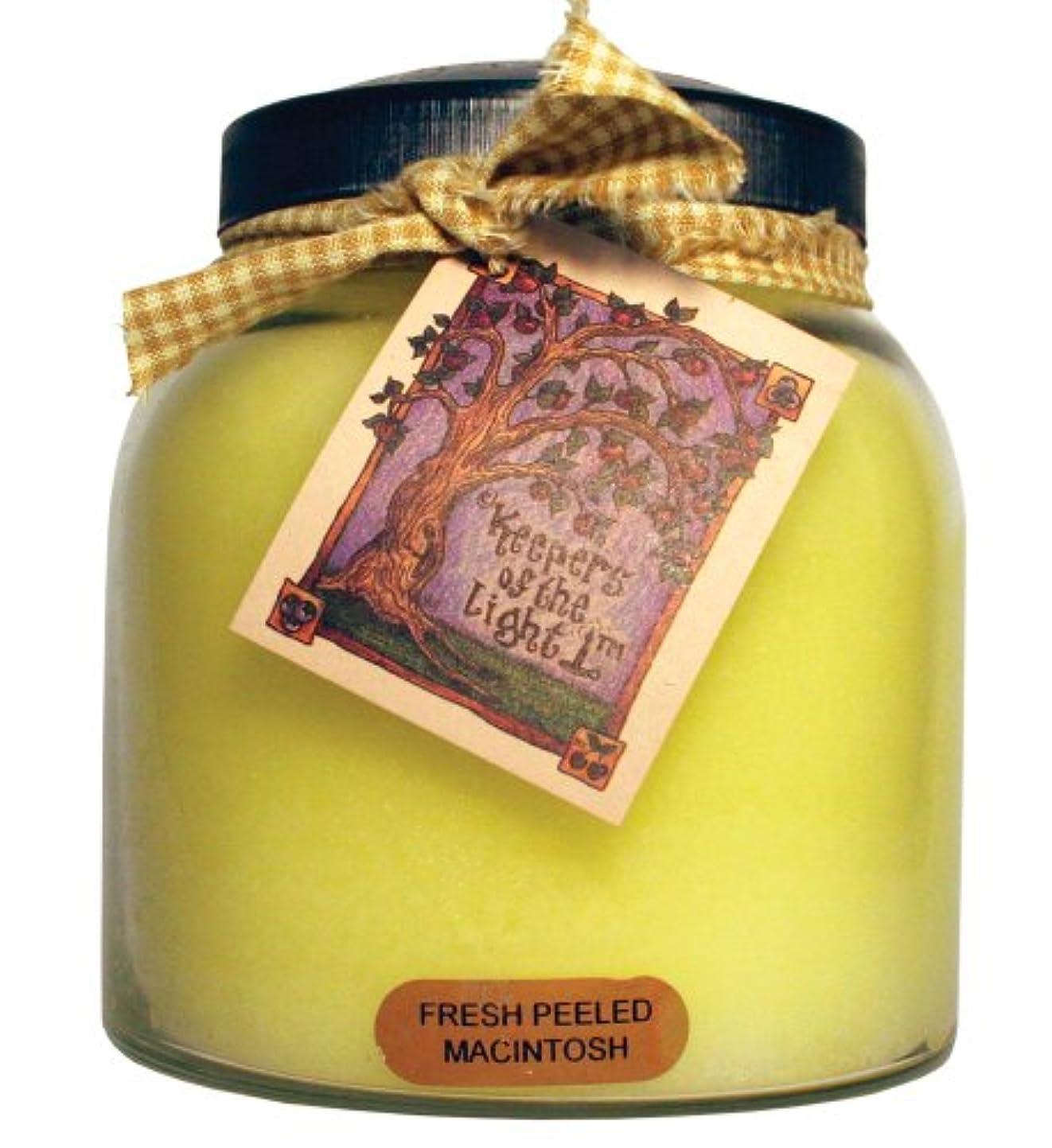 フェリー田舎消費者A Cheerful Giver Fresh Peeled Macintosh Baby Jar Candle 34oz JP57