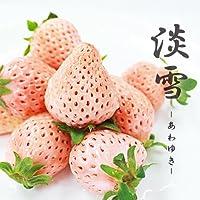 【 九州産 】 淡雪 高級 白イチゴ 贈答 贈り物 御祝 (2パック)