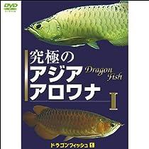癒し系DVDシリーズ 2007 日本 究極のアジア アロワナ 1 ドラゴンフィッシュ 1 (1WeekDVD)