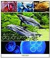 An Aquarium-水族館 ~京都水族館~ ブルーレイ【NHKスクエア限定商品】