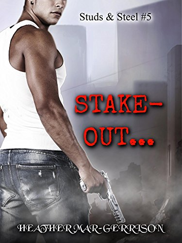 Stake Out... (Studs & Steel Book 5) (English Edition)
