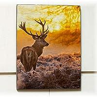 TANGANGEL鹿フロストサンセット30 x 50 cmウッドパレットデザインウォールアートサインプラークステッカー壁画
