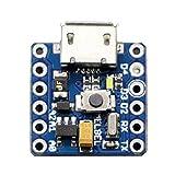PICO - 世界最小サイズ Arduino互換機