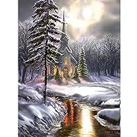 Daeum 雪のシーンdiy 5dフルドリルダイヤモンド絵画刺繍クロスステッチキットラインストーンモザイク家の装飾クラフト,30*40cm