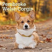 Pembroke Welsh Corgis 2019 Calendar