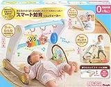 うちの赤ちゃん世界一 (R) スマート知育ジム&ウォーカー 画像