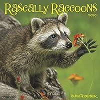 Rascally Raccoons 2020 Calendar