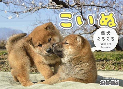 2019カレンダー こいぬ 柴犬ころころ