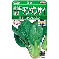サカタのタネ 実咲野菜3304 暑さに強いチンゲンサイ 涼武 00923304