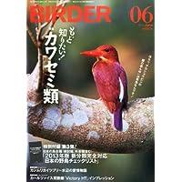 BIRDER (バーダー) 2013年 06月号 もっと知りたい!  カワセミ類【特別付録 2013年版新分類完全対応 日本の野鳥チェックリスト】付き